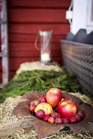 Röda äpplen, bär, halm och granris skapar en tidlös julkänsla.
