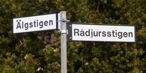 Pentti Lahtinen (S) bor på Rådjursstigen i Masbo. Rådjursstigen finns också i Laggarbo. Även Harstigen finns på båda platserna.