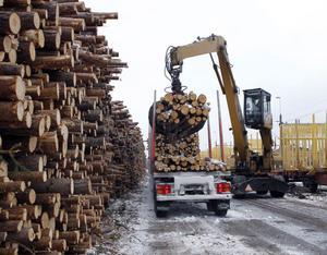 Här går det undan! Olle Vilhelmsson i lastkranen greppar en stor del av virkestraven på lastbilen med sin jättegrip. På tre–fyra tag är traven förflyttad från bil till tåg.