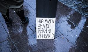 Miljö- och klimatlarmen har avlöst varandra de senaste åren. Evert Andersson och Mats Kälvemark skriver att de är tomma ord.