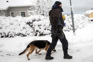 Hundpatrull befann sig vid mordplatsen i fredags.