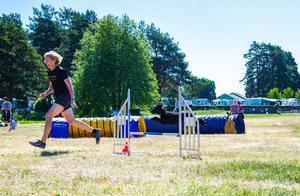 Malin Tangfeldt och mellanpudeln Hippi från Bollnäs är ett meriterat landslagsekipage. Tillsammans vann de under lördagen hoppklassen klass 3 medium.