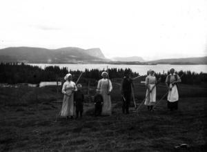 En bild från höskörden, förmodligen tagen i Häggnäset av Mårten Wassdal.