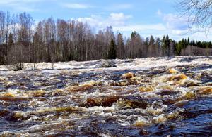 Vattennivån fortsätter att stiga trots att den samtidigt blir allt bredare.