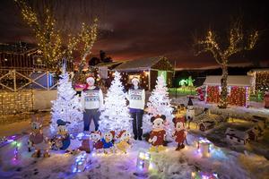 De tre granarna med mobilstyrda ljusslingor är en av nyheterna i julhusets trädgård i år.