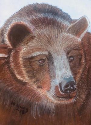 Våra svenska björnar (alla rovdjur) har en viktig roll i naturen, för den biologiska mångfalden, och för de ekosystemen de ingår i, mycket större än vad forskarna tidigare ansett, skriver Maria Ljung i sitt debattinlägg.  Illustration: Maria Ljung