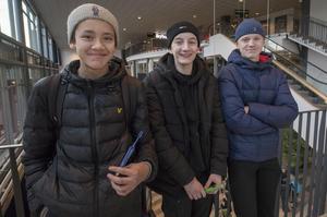 Kim Elmquist, Rasmus Söderström och Valter Hermansson hade nära till mässan från Stigslunds skola. Men snart är det gymnasiet i stan som gäller.– Det blir kul att börja gymnasiet och träffa nytt folk, säger Rasmus.