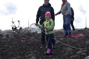 Eijra redo att hjälpa pappa Mattias och mamma Tuva med kalvmärkningen.