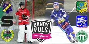 Bandypuls livesänder damernas kvarts- och semifinaler – start fredag klockan 19.00. Bild: Stisse Åberg, Magnus Wilsson, Montage