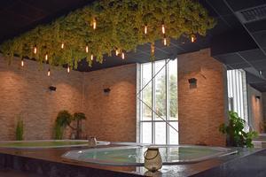 Det finns bassänger för alla smaker på Havsbadens spa-anläggning. Här är två bubbelpooler med utsikt mot skogen.