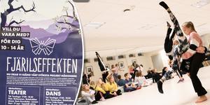 I Fjärilseffekten samlar Estrad Ljusdal och musikskolan dans, musik och teater. I juni nästa år blir det premiär, för deras största projekt någonsin.