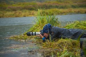 I somras åkte Marcus Möller till Alaska för att filma grizzlybjörnar för en pitch för SVT. Foto: Marcus Möller