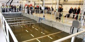 Reningsverket vid Utanbergsvallarna utanför Klövsjö ska avlasta Vemdalsskalet med avloppsrening genom en överföringsledning.