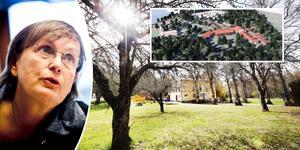 – Det blir minst 40 bostäder, säger Eva-Karin Hamilton och planerna på ett seniorboende och fyra radhus i anslutning till Engesbergs herrgård.