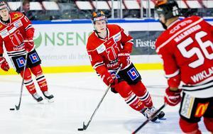 Ari Gröndahl. Bild: Johan Bernström/Bildbyrån