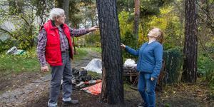 """Ägarna till husbilen och tomten pekar upp längs med trädstammen som är svedd av eld. """"Du ser en av de nedre grenarna har brunnit, vi hade tur att den här tallen hade grenar högre upp"""", säger Marita Österberg, här tillsammans med Bror."""