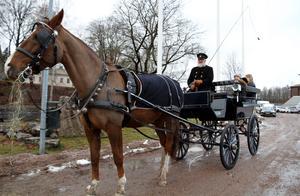 Utanför Verket fanns chansen att åka häst och vagn.