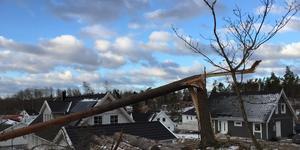 Så här såg det ut i stadsdelen Björnö under onsdagen. Många knäckta träd hade lagt sig över både hus och vägar.