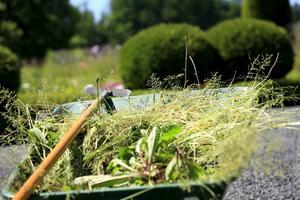 Containrar för trådgårdsavfall ställs ut tidigare i år i Skara kommun.