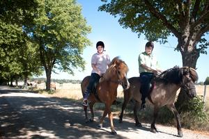 Christine Becker och Bernt Gillström tar sig en kort ridtur i allén på Sörby gård, där Christine har sin häst. Christine bor i Västerås och Bernt i Hallstahammar.