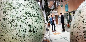 Några av Hans Hedbergs berömda ägg återfinns i museet i Örnsköldsvik. Per Nylén och Per Grimell diskuterar förvärvandet av jättekörsbären.