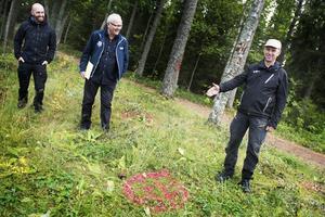 Arbetsledaren Stefan Karlsson visar kommunens friluftsstrateger Joel Libell och Bosse Edman hur det är tänkt att de olika aktiviteterna ska placeras.