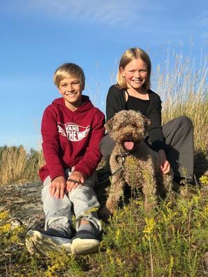 Syskonen Nils och Filippa med hunden Maya i kvällssolen. Foto: Karin Nyberg