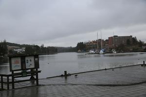 Här vid Borgmästarudden kommer valborg firas i år, ute i vattnet kommer brasan att anläggas.