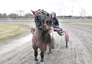 Den allra minsta ponnyn på hela Dannero - Ibra