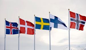 Skulle de nordiska länderna kunna gå samman?Foto: Henrik Montgomery/TT