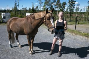 Sofia Rödén har haft hästen Cool Jack i 12 år, men har aldrig upplevt att det har varit en sådan här brist på foder hos hästfolket i länet.