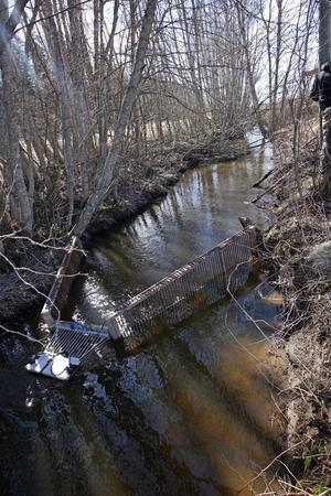 Länsstyrelsen har placerat ut fiskräknare i flera vattendrag i Västernorrland.