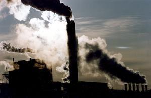 Bland yngre väljare är miljö- och klimatfrågan den allra viktigaste. Foto: Björn Larsson Ask/TT