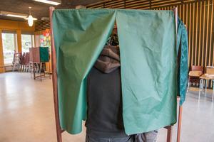 Ungdomar är mer trendkänsliga än  äldre väljare, tror statsvetaren Niklas Bolin.