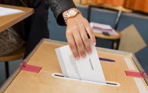 Självklart ska man gå och rösta i EU-valet, skriver Lena Ludvigsson-Olafsen (S). Foto: TT