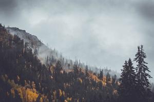 Vackra vyer över Vemdalen. En av bilderna som skickats in och nu kan generera intäkter till arbetet mot klimatförändringar.