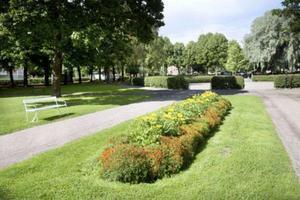 En film om Stenebergsparken visas under Arkivens dag i Gävle. Bild: Arkiv