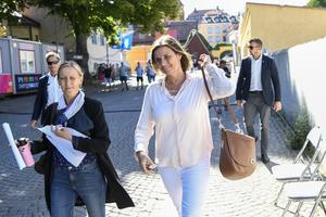 Miljöpartiet är  det politiska parti som ställt till mest problem för Sveriges lantbrukare och även resten av landsbygden, hävdar Eric Thorsell. Bilden visar Isabella Lövin i Almedalen.Foto: Henrik Montgomery / TT