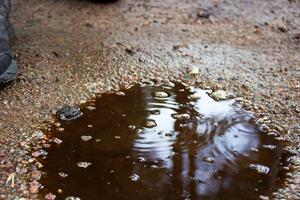Det brunsolkiga vattnet fastnar på skorna och lukten följer dig resten av dagen.