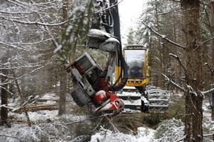 Sammanslagningen  ska enligt ledningen hos skogsägareföreningarna förhoppningsvis ge större omsättning av virke och ökad lönsamhet för skogsägarna.