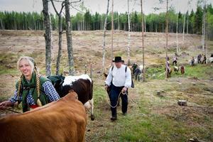 Skräpporna är en hyllning till kvinnor som gick vall i skogen och arbetade på fäbodarna. Här leder Tin Gumuns sin flock upp till sommarbetet.Arkivbild: Thomas Fahlander