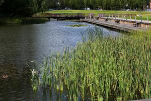 En rånare hotade en väktare med kniv vid Vattenparken i Borlänge. Falu tingsrätt dömde mannen till ett års fängelse för rån, en dom som Svea hovrätt nu fastställer.