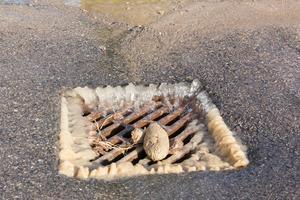 Trots att vattnet stängts av fortsatte vatten att forsa under asfalten och ner i en brunn utanför Polstjärnegatan 49 i Västerås.