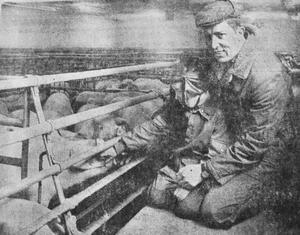 """""""Om jag finge höra upp med svinuppfödningen skulle det bli en präktig konkurs"""", deklarerade Lars Strömblad och talade om att han investerat åtskilliga tusenlappar i sin svinstall nära Hylletofta."""