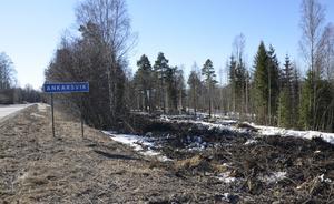 I området har det skett avverkats skog under vintern.  Nu påbörjas jobbet med att bygga upp bland annat vägarna i området.
