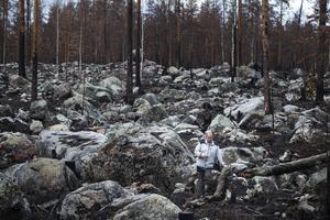 Några hundra meter från vildmarkscampen i Ängra är skogen borta eller brunnen. Det mesta av timret är redan utkört, men under våren fanns ungskogen fortfarande kvar.