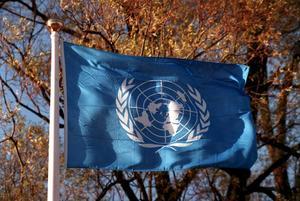 Foto: TTFirandet av FN:s 75-årsjubileum i höst blir en värdemätare på var länderna står.