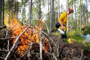 Länsstyrelsen Dalarna har beslutat om ett regionalt eldningsförbud i länet.