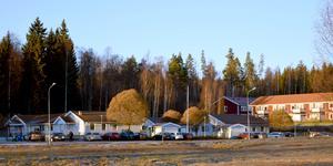 Här – i skogen bakom förskolan och hyreshusen i Högsveden – planerar kommunen att bygga ett nytt demensboende. Demensförbundets ordförande och jurist Pär Rahmström beskriver placeringen som