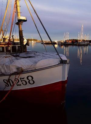 Fiskebåt för räk- och skaldjursfiske.Foto: Strömstad Tourist